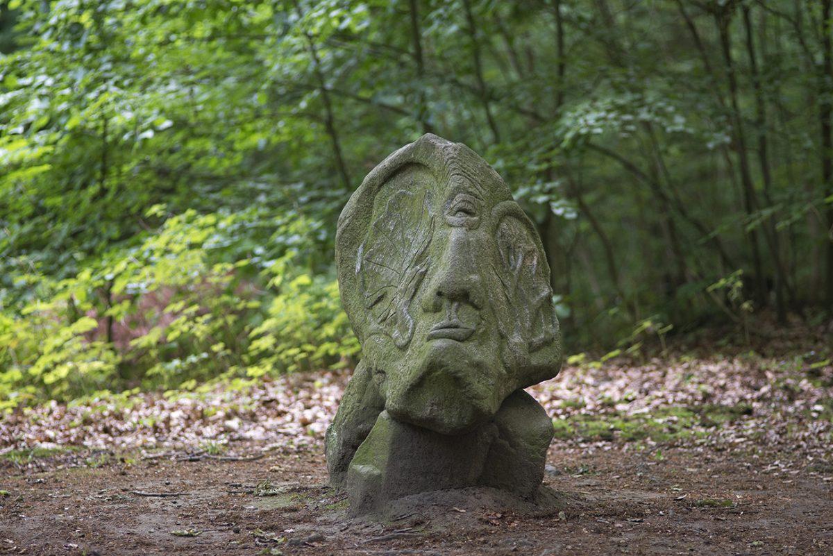 Harald Thoms – Angesichts des Waldsterbens